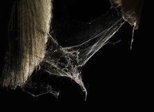 Cobweb or spider web in ancient thai house isolated on black background Royalty Free Stock Images