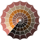 Cobweb vector Royalty Free Stock Photos