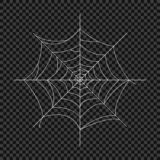 Cobweb. Vector spider web. Design elements on an isolated transparent background. Eps stock illustration