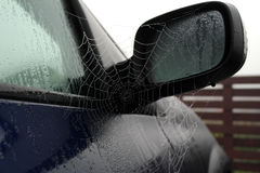 Cobweb. Wet cobweb hanging on cars mirror royalty free stock photo