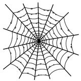 Cobweb on white. Royalty Free Stock Photo