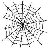 Cobweb on white. Royalty Free Stock Photo