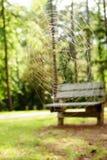 cobwebs Photos libres de droits