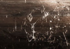 Cobwebs in the basement. A cobwebs in the basement . A photo stock images