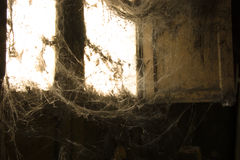 Cobwebs Stock Image