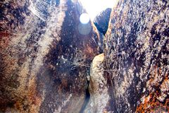 Cobwebs between the rocks in the Seychelles Royalty Free Stock Photo