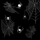 Cobwebs and spiders on a black background Stock Images