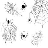 Cobwebs and spiders on a white background.  Stock Photos