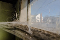 Cobwebs on window. Large spread of cobwebs in abandoned house Royalty Free Stock Images