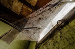 Cobwebs on window. Large spread of cobwebs in abandoned house Stock Photo