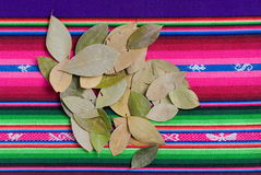 Coca Leaves. On colorful tapestry Royalty Free Stock Photo