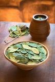 Coca Leaves e Coca Tea secadas Fotografia de Stock