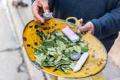 Coca Leaves em Potosi Fotografia de Stock