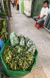 The coca leaves for sale Stock Photos
