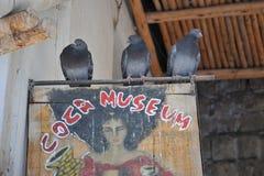Coca Museum i La Paz Arkivfoto
