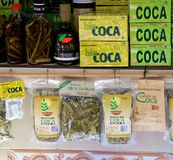 Coca tea Stock Images