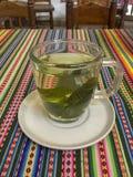 Coca Tea Drink arkivbild