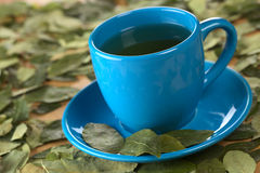 Coca Tea Royalty Free Stock Image