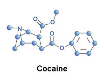 Cocaine is a strong stimulant. Used as a recreational drug. It is addictive due to the reward pathway in the brain. It acts by inhibiting the reuptake of vector illustration