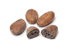 Cocao beans Stock Photography