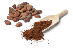 Cocao beans Royalty Free Stock Photos