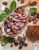 Cocao powder and cocao beans. Stock Photos