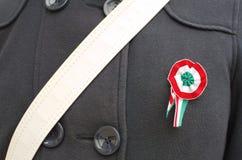Coccarda ungherese appuntata Fotografia Stock Libera da Diritti