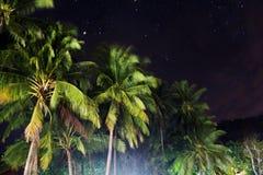 Cocchi alla notte Fotografia Stock