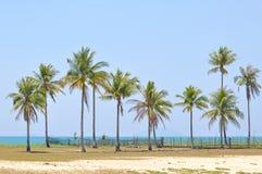 Cocchi sotto cielo blu alla spiaggia del mar Cinese meridionale Fotografia Stock