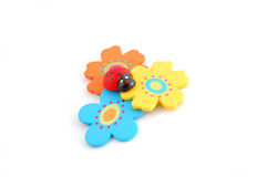 Coccinella con i fiori fotografia stock libera da diritti