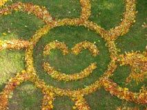 Coccinella delle foglie immagini stock