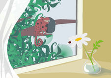 Coccinella e chameleon Immagini Stock