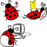 Coccinelle illustration stock