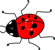 Coccinelle illustration libre de droits