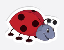Coccinelle de dessin animé d'amusement Images stock