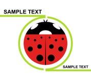 Coccinelle de logo Images libres de droits