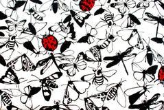 Coccinelle e farfalle Fotografia Stock Libera da Diritti