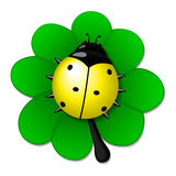 Coccinelle jaune sur le congé vert Image libre de droits