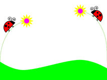 Coccinelles sur des fleurs Image libre de droits