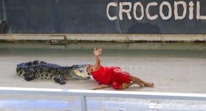 Coccodrillo di manifestazione di Editorial-1st grande sul pavimento nello zoo Fotografie Stock Libere da Diritti