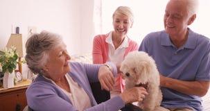Coccole felici della famiglia un cane archivi video
