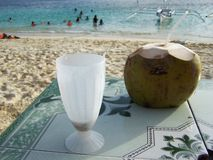 Cocconut drinks on the beach Royalty Free Stock Image