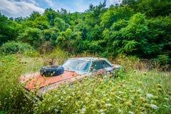 Coche abandonado, oxidado en el Shenandoah Valley rural, Virginia Fotografía de archivo
