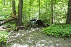 Coche abandonado viejo en el bosque fotos de archivo