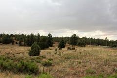 Coche antiguo y cabaña de madera parcial en el tilo, el condado de Navajo, Arizona, Estados Unidos fotografía de archivo