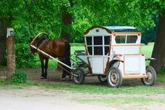 Coche con el caballo de la castaña Fotografía de archivo libre de regalías