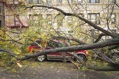 Coche dañado por Hurricane Sandy Imagen de archivo libre de regalías
