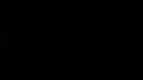 Coche de carreras del fuego stock de ilustración