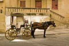 Coche del caballo Imagen de archivo