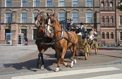Coche del caballo Imagenes de archivo